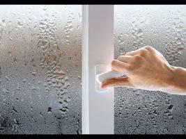Конденсат на окнах. Почему потеют пластиковые окна и как с этим бороться?